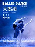 芭蕾舞剧 《天鹅湖》